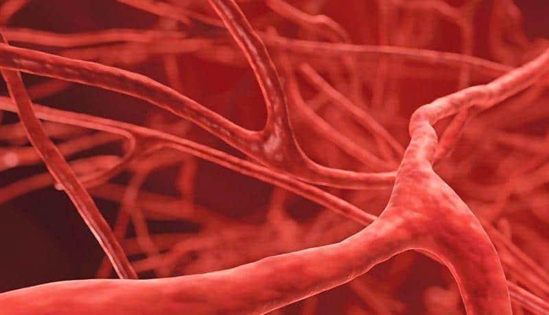 первичная тромбофилия