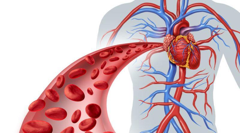 первая помощь артериальная гипотензия