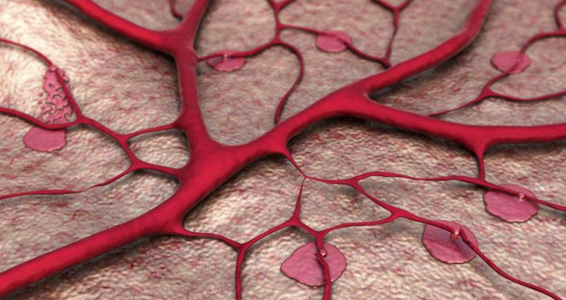 какие препараты укрепляют сосуды и капилляры