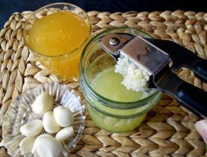 имбирь лимон чеснок для чистки сосудов