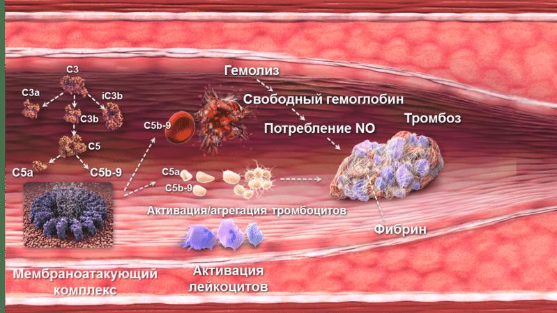 препараты от тромбов в сосудах