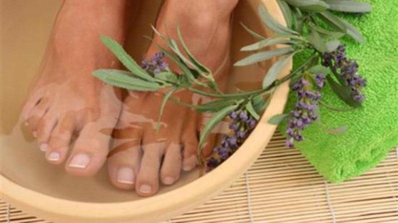 лечение травами варикоза